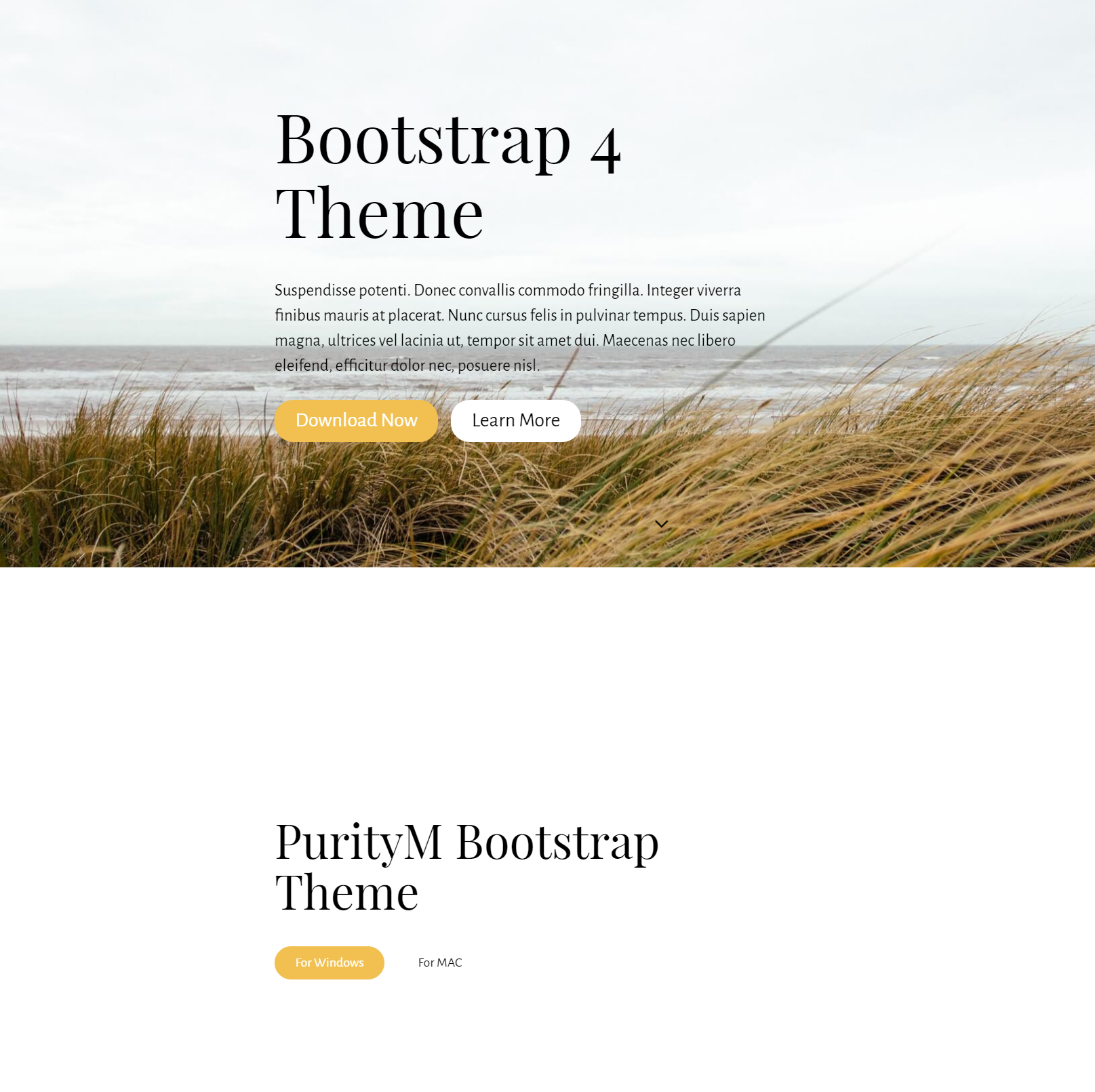 Free Download Bootstrap 4 Themes