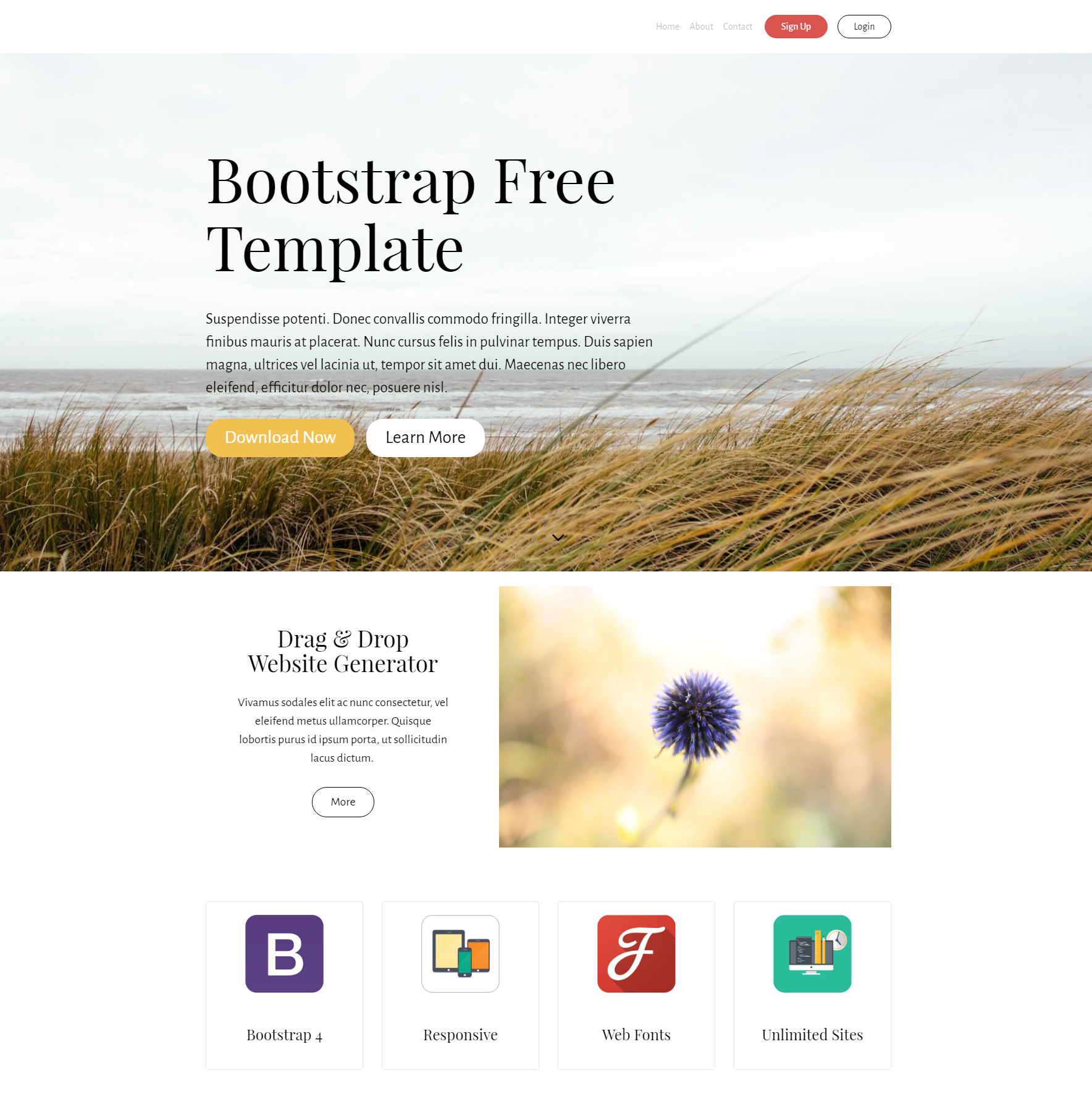 Download Bootstrap Free Templates